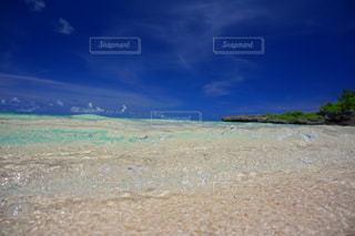 海に隣接する砂浜の写真・画像素材[2310132]