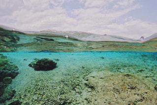 水の中の写真・画像素材[1390558]