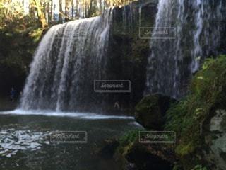 自然の写真・画像素材[43895]
