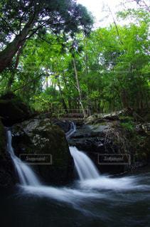 2つの滝の写真・画像素材[1404846]