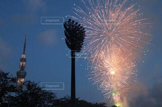 空に花火の写真・画像素材[1392421]