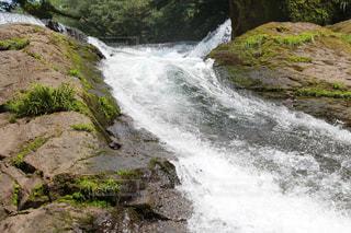 涼しい滝の写真・画像素材[1394573]