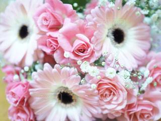 ピンクの花束の写真・画像素材[1694489]