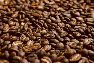 コーヒー豆(エチオピア)の写真・画像素材[1396507]