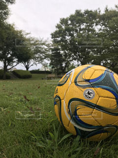 サッカーの写真・画像素材[1399976]