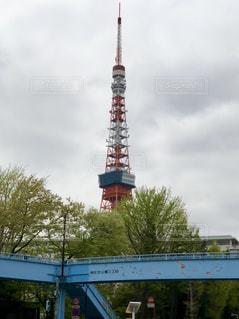 曇り空の東京タワーの写真・画像素材[1398717]