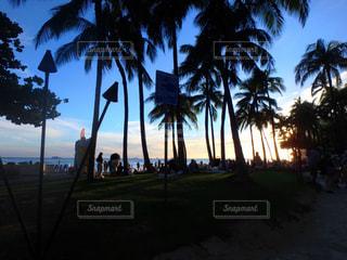 hawaiiの写真・画像素材[1400782]