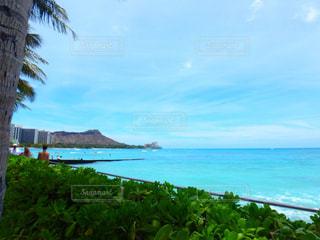 hawaiiの写真・画像素材[1400784]