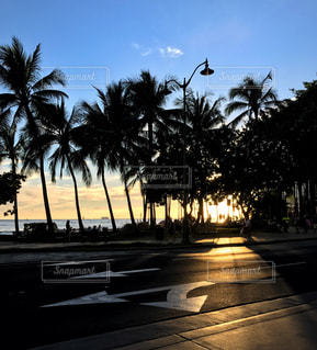 hawaiiの写真・画像素材[1400788]