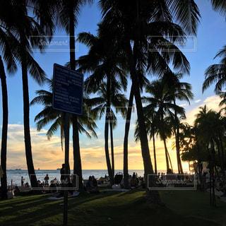Hawaiiの写真・画像素材[1400789]
