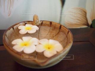 皿の中の花の写真・画像素材[1401514]