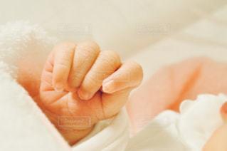 産まれたての手の写真・画像素材[1402369]