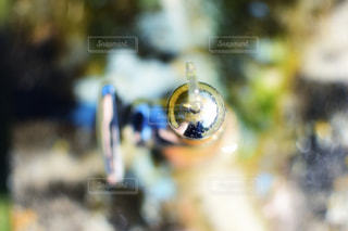 蛇口のアップの写真・画像素材[1412900]