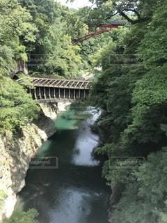 橋の上からの写真・画像素材[1409178]