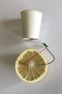 グレープフルーツ電池の写真・画像素材[1426374]