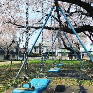 公園の写真・画像素材[1496300]