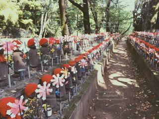 増上寺のお地蔵さんの写真・画像素材[1418279]