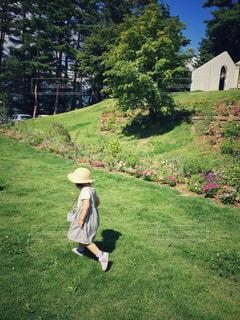 麦わら帽子の女の子の写真・画像素材[1426675]