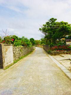 竹富島の街並みの写真・画像素材[1412492]
