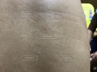 背中の写真・画像素材[1406235]