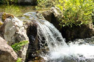 小川の滝の写真・画像素材[1440277]