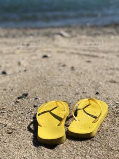 夏の浜辺の写真・画像素材[1417780]