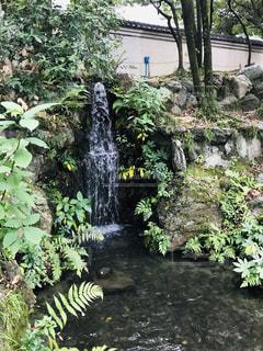 庭園の滝の写真・画像素材[1636650]