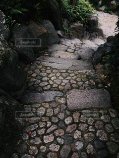 日本庭園の石畳の写真・画像素材[1636653]