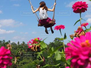 お花畑の空中ブランコの写真・画像素材[2235644]