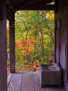 風景 - No.45505