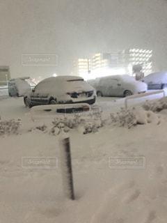 雪に覆われた車の写真・画像素材[1411950]