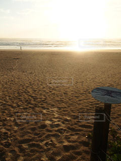 morning beachの写真・画像素材[1412880]