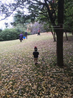 公園でフリスビーを再生する人々 のグループの写真・画像素材[1412151]