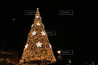 クリスマスツリーの写真・画像素材[1413471]