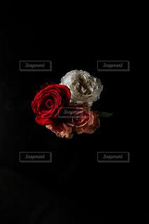 赤い花を着ている人の写真・画像素材[1671030]