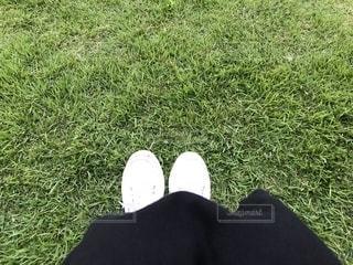 ホワイトスニーカーで芝生の上にの写真・画像素材[1453558]