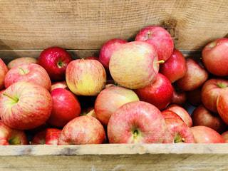 木箱に入ったリンゴの写真・画像素材[1514532]