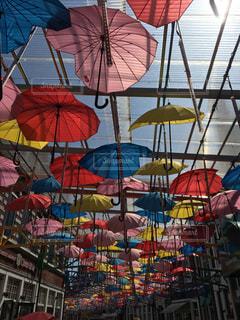 傘の写真・画像素材[1417159]