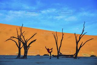 ナミブ砂漠でヨガの写真・画像素材[1449486]
