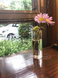花の写真・画像素材[1420081]