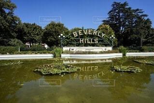 ビバリーヒルズの池の写真・画像素材[3793605]