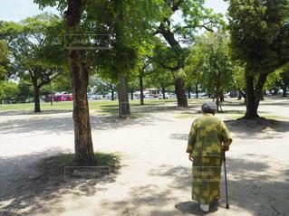 おばあちゃんと散歩の写真・画像素材[1424520]