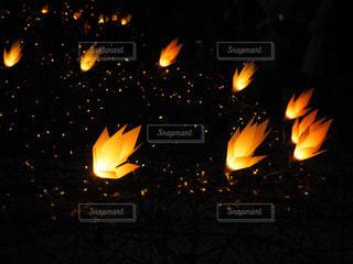 束が夜ライトアップの写真・画像素材[1692162]