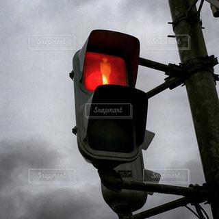 信号機の写真・画像素材[1686572]