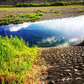 河原の写真・画像素材[1694371]