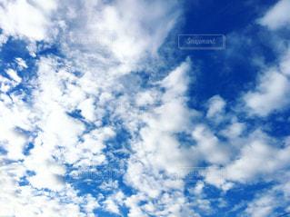 空に雲の群の写真・画像素材[2316177]
