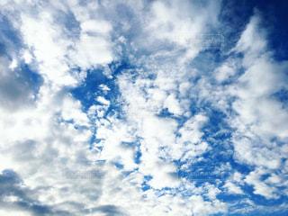 空の雲の群の写真・画像素材[3311232]