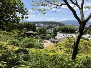 夏、高台からの銀閣寺ですの写真・画像素材[1428012]