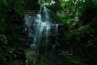 森の中の滝の写真・画像素材[1427856]