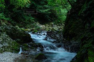 ため息の出る美しい高千穂峡の写真・画像素材[1427859]